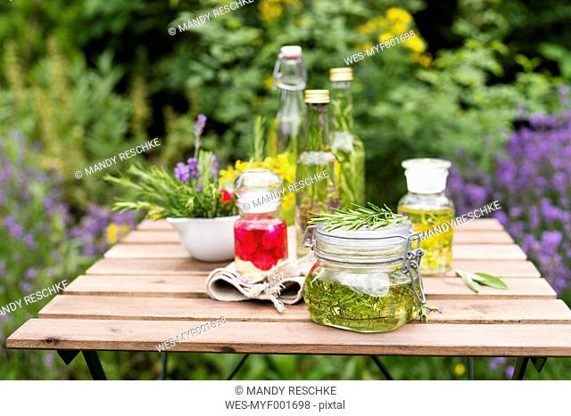 Different herb oils, thyme, rose, lavender, salve, rosemary and saint john's wort
