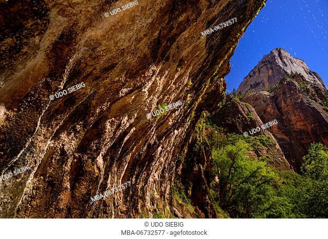 The USA, Utah, Washington county, Springdale, Zion National Park, Zion canyon, weeping rock