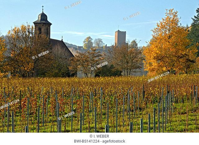 view from the Nikolauskapelle at Klingenmuenster on the ruin Landeck, Germany, Rhineland-Palatinate, Pfalz, Deutsche Weinstrasse, Gleiszellen-Gleishorbach