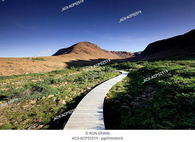 Boardwalk on The Tablelands hiking trail in Gros Morne National Park, Newfoundland and Labrador, Canada