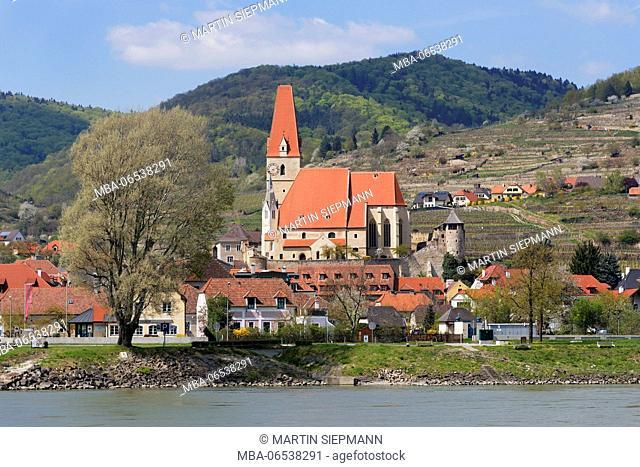 Weißenkirchen in the Wachau, Danube, Wachau, Waldviertel, Lower Austria, Austria