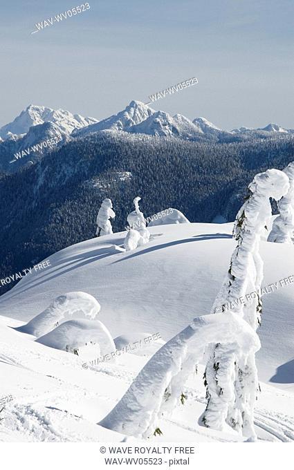 Snowshoeing on Grouse Mountain, British Columbia