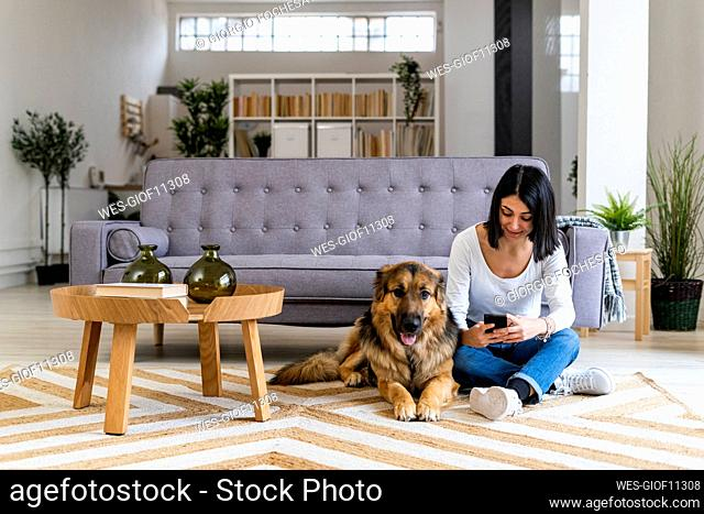Woman using mobile phone while sitting on carpet with dog in living room