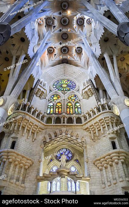 Low angle interior view of vaulting, Sagrada Familia, Barcelona, Catalonia, Spain