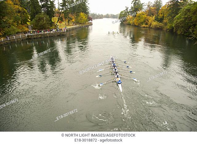 Canada, BC, Victoria. Gorge waterway. Head of the Gorge rowing regatta