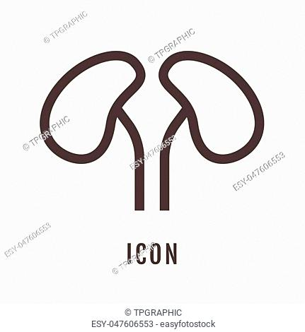 icon Kidney illustration isolated sign symbol thin line for web, modern minimalistic flat design vector on white background and logo. Symbol