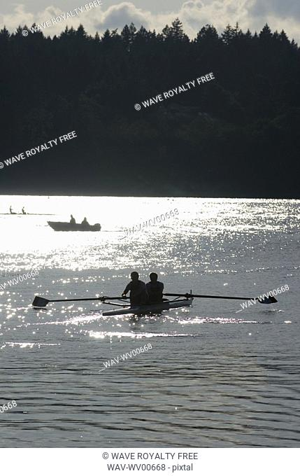 Silhouette of rowers competing on a lake, Elk Lake, Victoria, BC, Canada