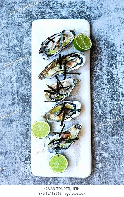 Oysters with algae strips and limes on a bed of salt (seen from above)
