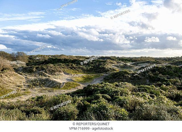 Bray-Dunes - 18 october 2016 Pres de Zuydcoote la dune Marchand Het Marchand duin The dune of the Marchand Photo: JMQuinet/Reporters Reporters / QUINET