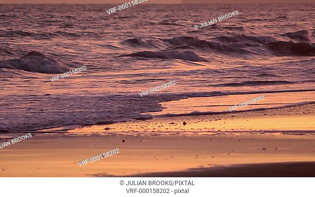 CU waves lapping at the shoreline lit by a sunset sky - 2