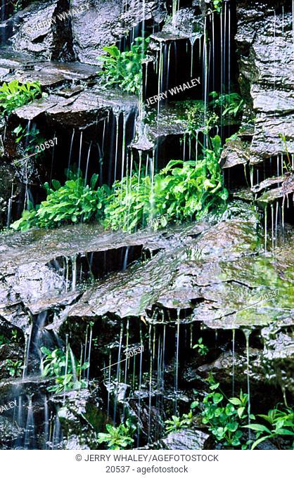Water on Rocks. Great Smoky Mountains National Park. TN. USA