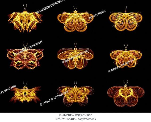 Selection of Fractal Butterflies