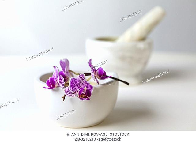 Purple Orchid Flowers, Mortar and pestle - beauty clinic concept