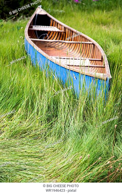 Blue canoe resting in tall grass