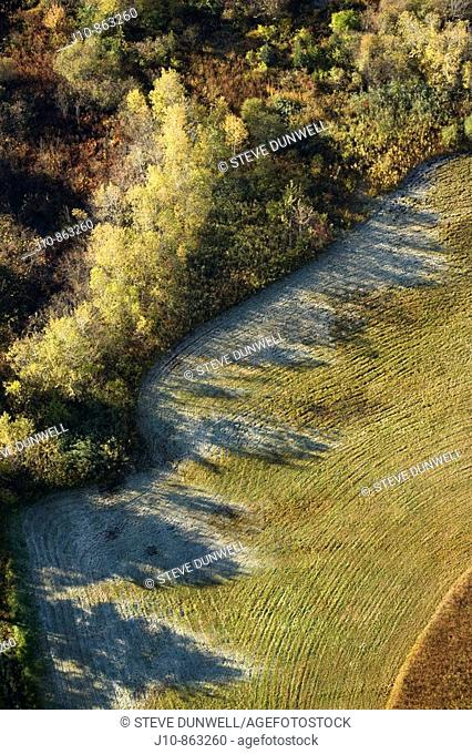 Autumn morning frost shadows aerial view, Westborough, Massachusetts, USA