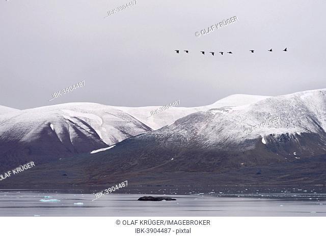 Monacobreen glacier, Liefdefjorden fjord, Spitsbergen, Svalbard Islands, Svalbard and Jan Mayen, Norway