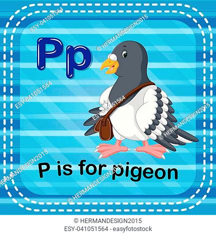illustration of Flashcard letter P is for pigeon