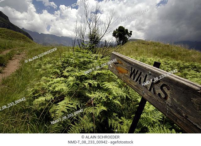 Close-up of a signboard in a field, Cathedral Peak, North Drakensberg, Kwazulu-Natal, South Africa