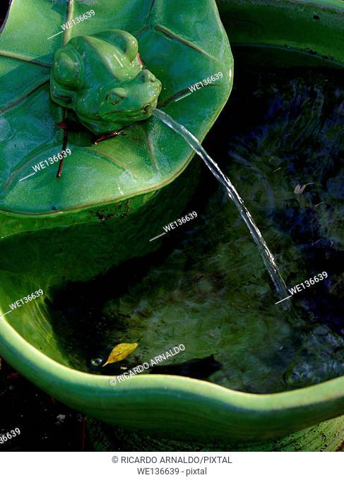 Garden frog fountain