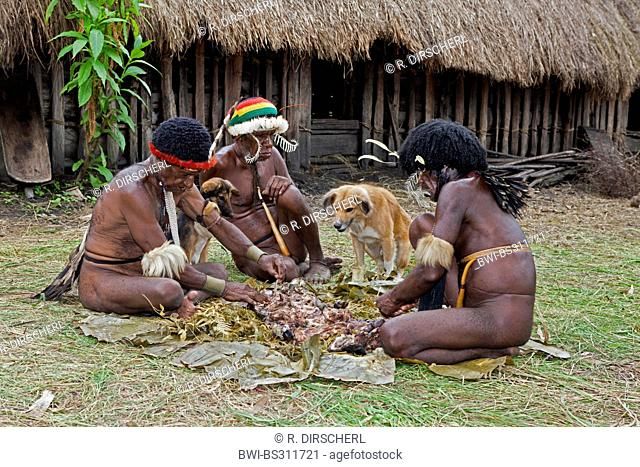 three Dani men and two dogs around the remains of a pig cooked for the rare pigs feast, the pinnacle of the social and religious life, Indonesia