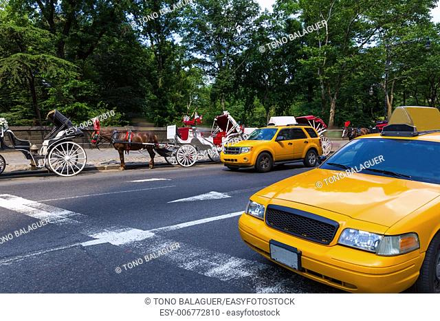 Central Park horse carriage rides in Manhattan New York US