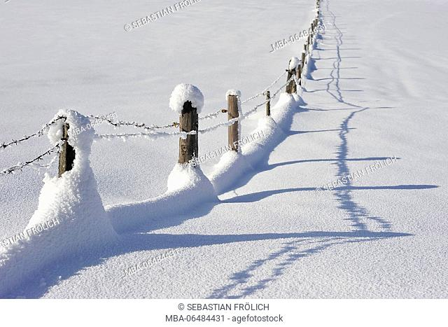 Snow-covered pasture fence with shadow
