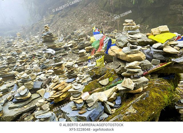 River Stacked Stones, Mountain Forest Footpath, Trek to Annapurna Base Camp, Annapurna Conservation Area, Himalaya, Nepal, Asia