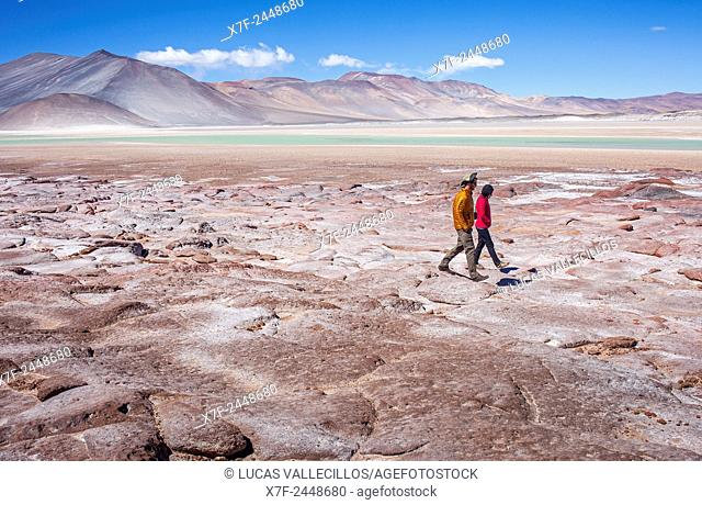 Piedras Rojas (Red Stones). In Salar (salt flats) or laguna (lagoon) de Talar, also called de Aguas Calientes, Altiplano, Puna, Atacama desert