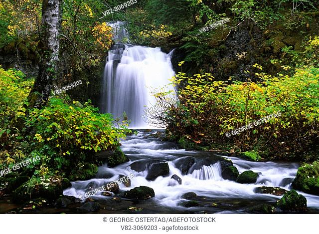 Twin Falls, Gifford Pinchot National Forest, Washington