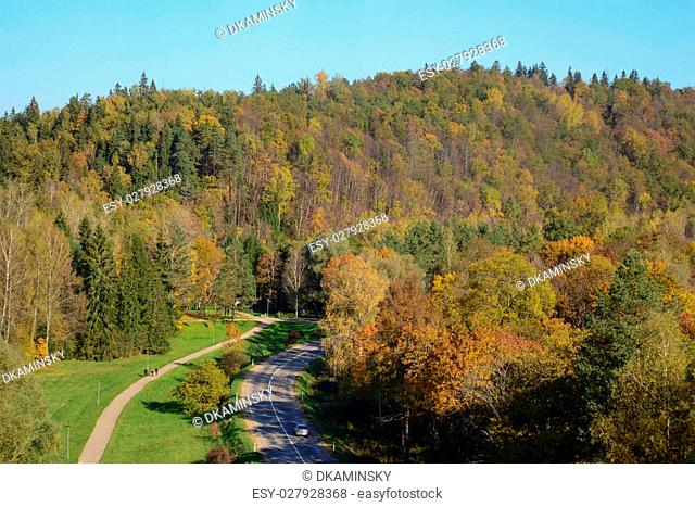 Photo of a road in the forest from a large distance. Nature photography