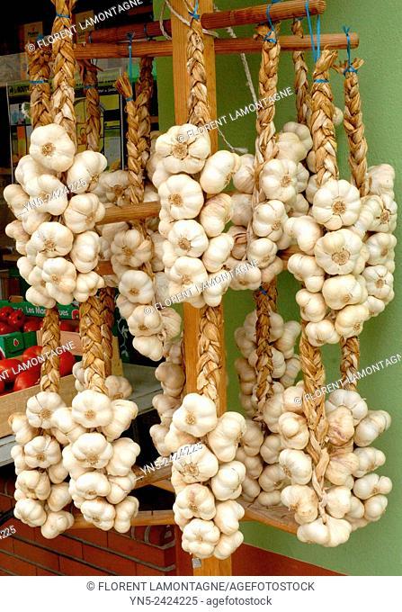 Wreath of white garlic of Lomagne, France