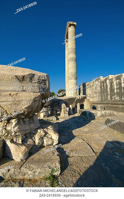 Standing columns in the Peristasis of The Apollo Temple of Didyma (Didymaion) 10th C. BC-4th C. BC, destroyed by Darius I of Persia in 494 BC and reconstructed...