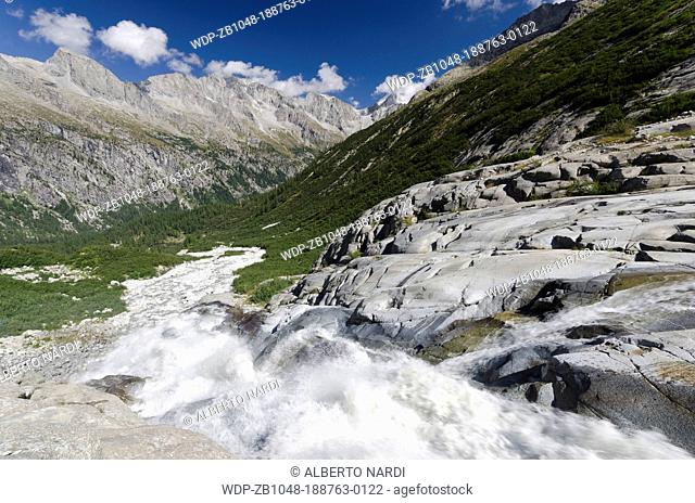 Mts Presena-Busazza-Cercen Chain, Genova Valley, stream from Lobbia Glacier, European Larches Forest, Adamello-Brenta Natural Park, the Alps, Trentino, Italy