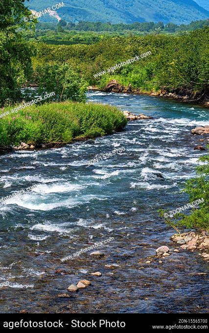 Beautiful landscape - view of stream clear water of mountain river and green forest on river bank. Scenery summer wild nature on sunny weather