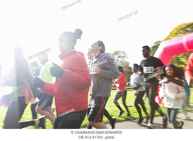 Runners running at charity run in sunny park