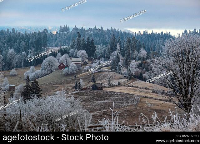 Winter coming. Picturesque foggy and moody morning scene in late autumn mountain countryside with hoarfrost on grasses, trees, slopes