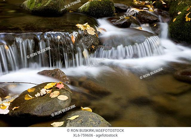 Water flowing over rocks in a mountain stream during autumn
