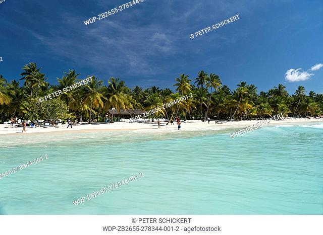 Traumstrand der Karibik Insel Isla Saona, Dominikanische Republik, Karibik, Amerika   dream beach on the Caribbean Island Isla Saona, Dominican Republic