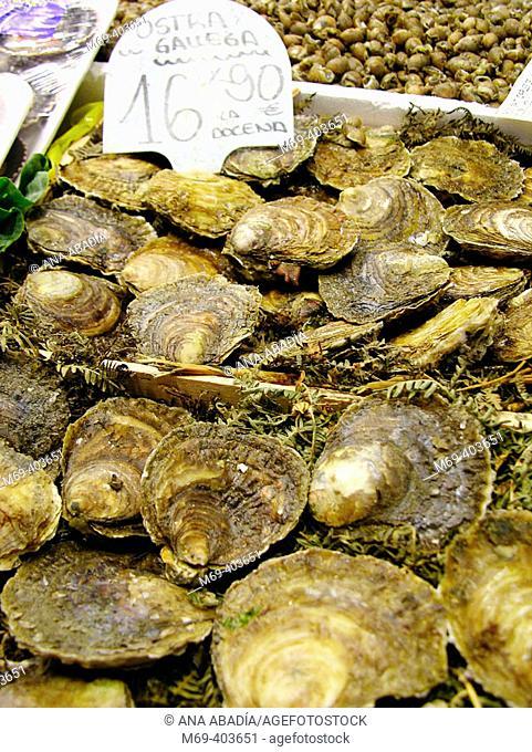 Oysters. La Boquería market. Barcelona. Spain