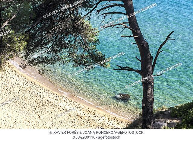 Treumal Cove in Lloret de Mar, Costa Brava Girona, Spain
