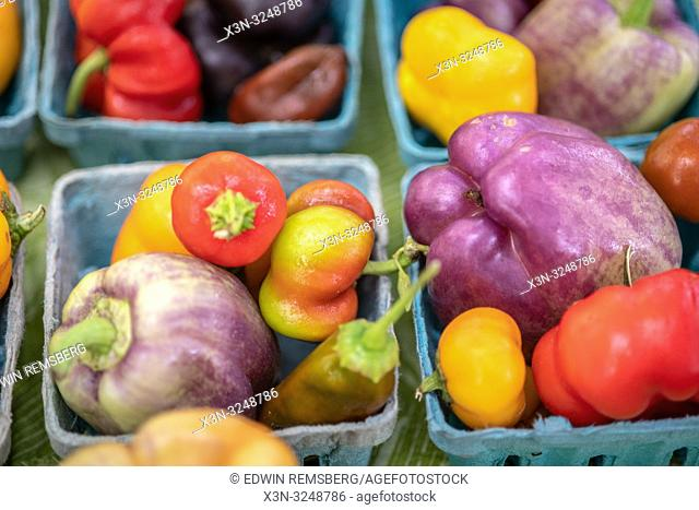 Close-up of cartons full of a variety of colorful peppers for sale at farmers' market, Rehoboth Beach, Delaware