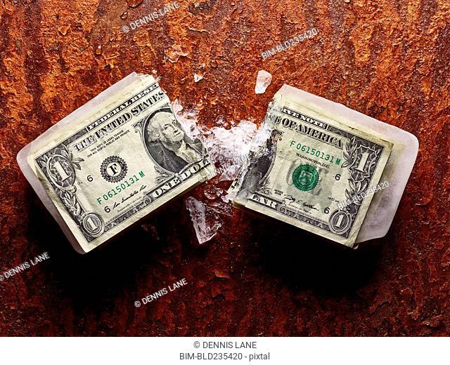 Broken dollar frozen in ice