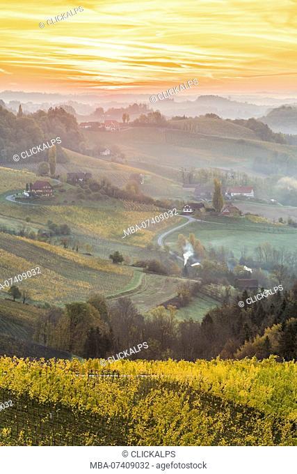 Sunrise in wine region. Spicnik, Kungota, Drava region, Slovenia