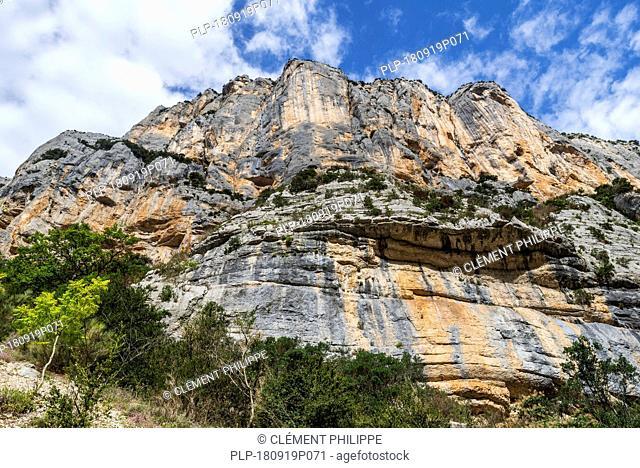 Vertical limestone cliff seen from the Sentier Martel in the Gorges du Verdon / Verdon Gorge canyon, Provence-Alpes-Côte d'Azur, France