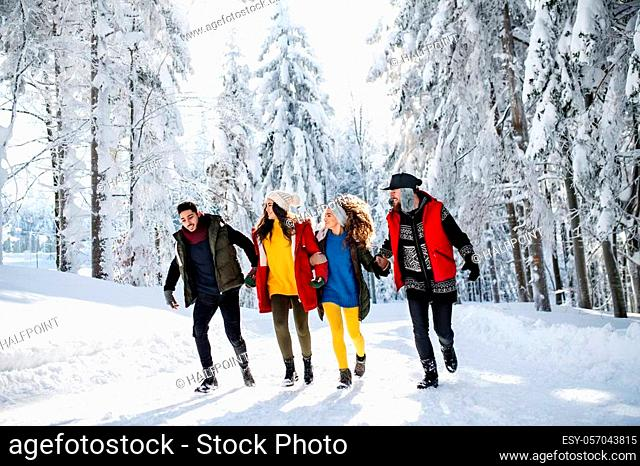A group of young cheerful friends on a walk outdoors in snow in winter forest, walking