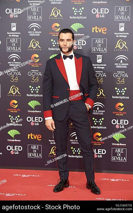 Antonio Velazquez attends 34th Goya Cinema Awards 2020 - Red Carpet at Jose Maria Martin Carpena Stadium on January 25, 2020 in Malaga, Spain