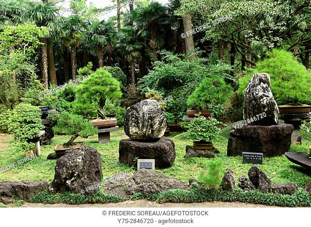 Yeomiji Botanical Garden,Jeju Island,South Korea