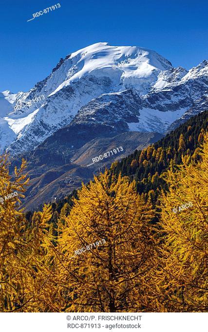 Piz Morteratsch, 3751, Oberengadin, Biancograt, Graubuenden, Schweiz