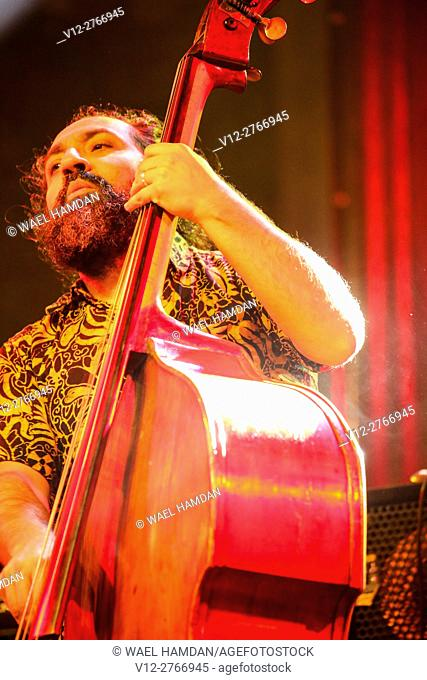 A Jazz Musician Plays contra bass in Cairo jazz festival, Egypt