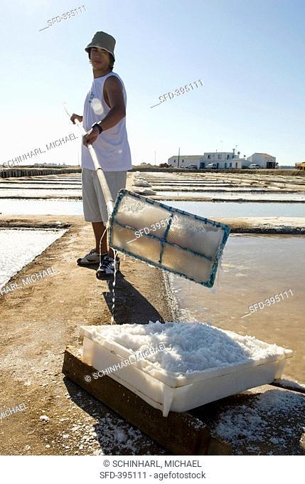 Harvesting Flor de Sal